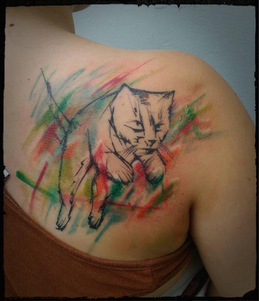 cat,kočka,barvičky